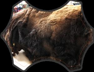 Buffali Hide