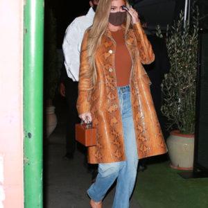 Kylie Jenner Brown Coat