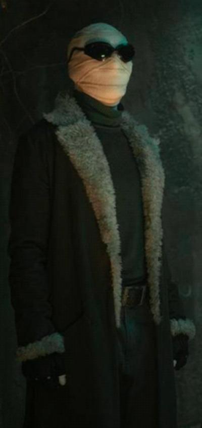 Animal Kingdom Olive Green Long Coat